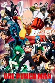 One Punch Man Saison 1