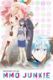 Recovery of an MMO Junkie VF