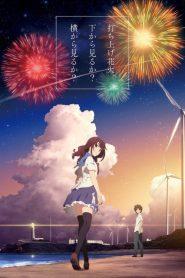 Fireworks (2017) VF