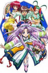 Denshin Mamotte Shugogetten OVA