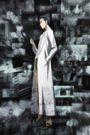 Steins;Gate 0: 23β- Divide by Zero (2015)