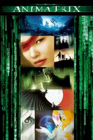 The Animatrix (2003) VF